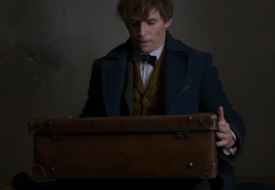 suitcase0.jpg